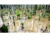 കക്കയം ഡാം തുറന്നു; കുറ്റ്യാടിപ്പുഴയിൽ വീണ്ടും വെള്ളപ്പൊക്കം, ജനങ്ങൾ ജാഗ്രത പാലിക്കണമെന്ന് കലക്ടർ