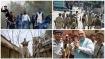 കാശ്മീരില് ഇനി സര്ക്കാര് 'നോട്ടം' ഈ 4 സംഘങ്ങളെ!! കല്ലേറുകാരെ ഒതുക്കാന് മറ്റൊരു തന്ത്രം
