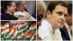 കോണ്ഗ്രസ്-ജെഎംഎം-ആര്ജെഡി സഖ്യം ജാര്ഖണ്ഡ് തൂത്തുവാരുമെന്ന് ആര്പിഎന് സിംഗ്