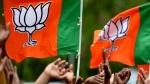 ദില്ലിയിൽ ബിജെപിയുടെ പ്ലാൻ 'ബി', ലക്ഷ്യം 30 ശതമാനം  അധികം വോട്ട്, കൂറ്റൻ  റാലികൾ ഒഴിവാക്കുന്നു
