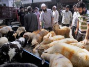 ആടുകളെ മോഷ്ടിച്ചു, 5 പ്രവാസികള്ക്ക് അബുദാബിയില് തടവ് ശിക്ഷ
