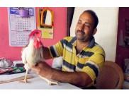 കത്തിമുനയില് ഒടുങ്ങേണ്ട പൂവന്കോഴി ജീവിതത്തിലേക്ക് കയറിയത് സ്നേഹച്ചരടിലൂടെ.. ഇതാ കണ്ണൂരില് നിന്നൊരു അപൂര്വകഥ