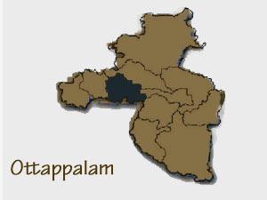 Ottappalam Municipal Chairperson Unfit Because Defection