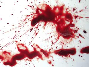 Man Stabbed Wife S Lover Death Chalakkudi