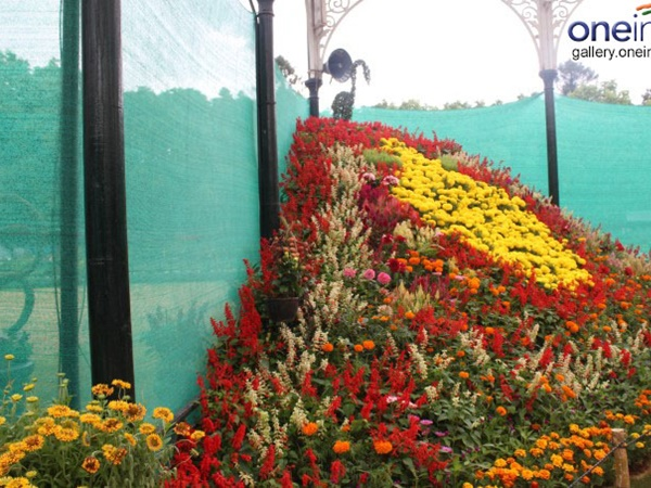 -lalbagh-flower-show-2015-independence-day-special-143895159