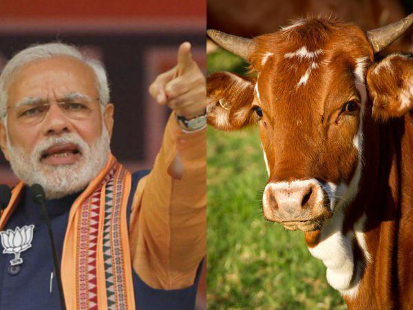 കേന്ദ്രത്തെ തള്ളി ബിജെപി നേതാവ്...!!! ബിജെപി നിരോധിച്ചാലും അധികാരത്തിലേറിയാല് ബീഫ് നല്കും..!!!