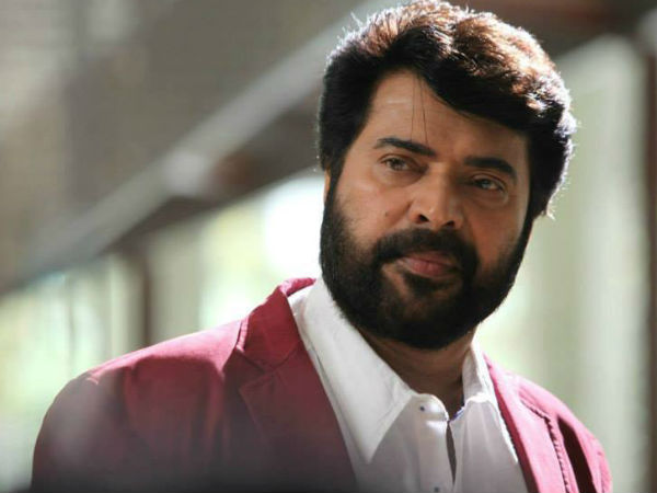 Mammootty Re Elected As Malayalam Communications Chairman
