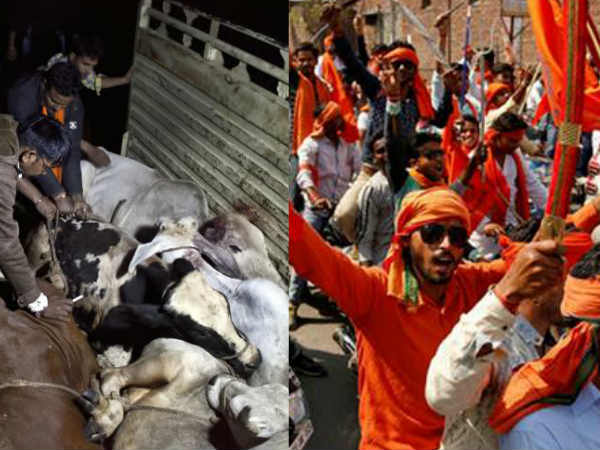 Two Lynched In Bengal On Suspicion Of Cattle Theft