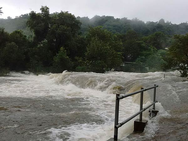 Heavy Rain Kerala Many Dams Are Opened Given Warning
