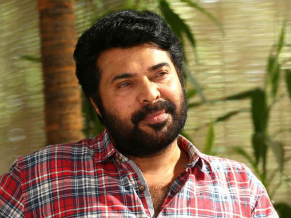 Resmi R Nair Criticises Mammootty And Mammootty Fans On Lichy Issue