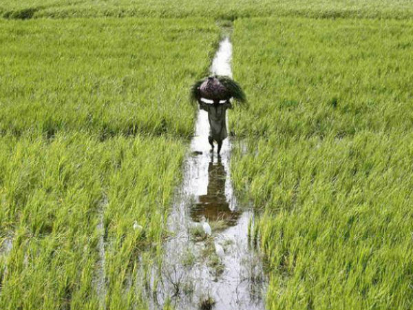 Kannur Keezhatoor Byepass Project Will Move Forward
