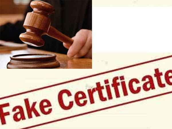 Media Report Inquiry About Bank Managers Degree Certificate