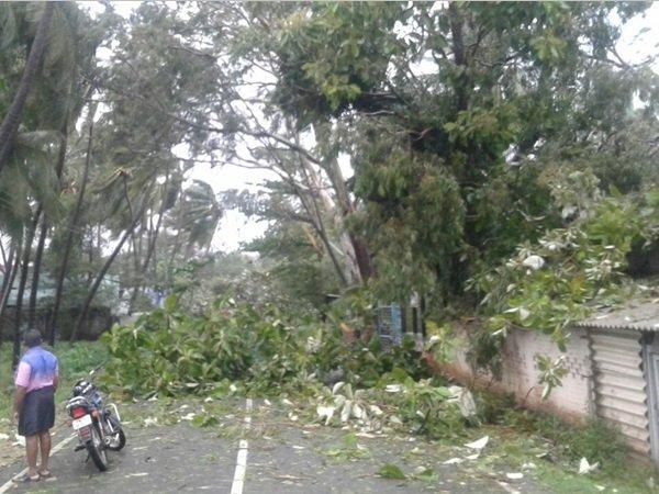 Ockhi Tropical Cyclone