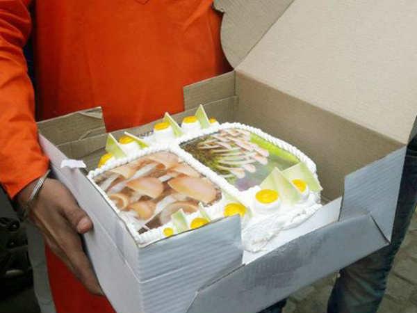 Bjp Celebrates With Mushroom Cake Delhi Alpesh Thakor S Jibe