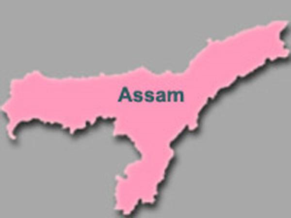 Iaf Chopper Crashes Assam 2 Dead