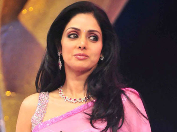 Who Is Sridevi Kapoor Legendary Indian Actress Info Graphics
