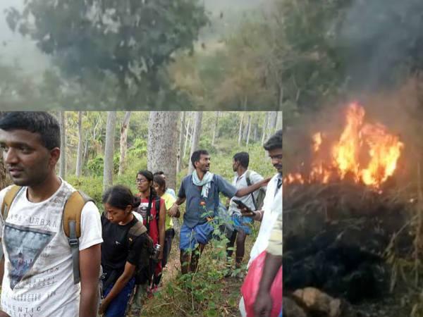 Reasons Behind The Theni Kolukkumala Forest Fire