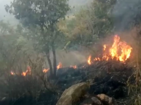 Forest Fire At Athirappilly Vazhachal Forest Area Chalakkudy