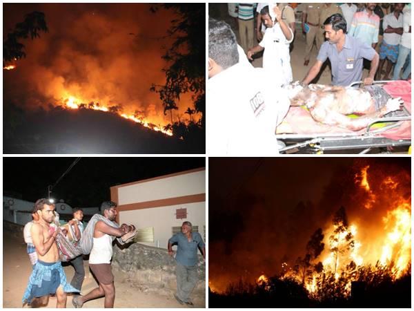 Theni Kurangini Forest Fire Videos In Social Media