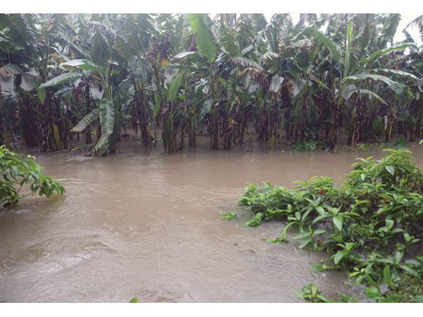 Three Dies Thrissure During Monsoon