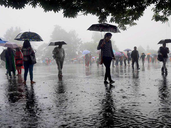 Monsoon Updates Sw Monsoon On Move Likely To Hit North India This Weekend