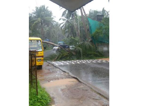 Kozhikode Local News Monsoon Casualities