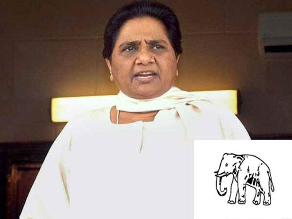 Bsp May Form Alliance With Sp And Left In Rajasthan