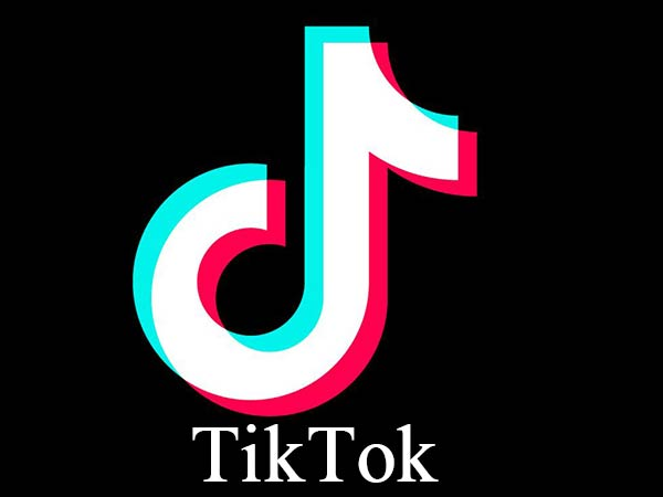 Ban On Tiktok Video App Lifted By Madras High Court Report