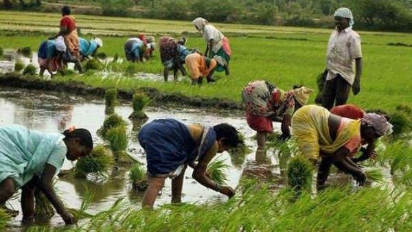 സുഭിക്ഷ കേരളം പദ്ധതി : 785 ഏക്കറില് ജില്ലയില് 1 കോടിയുടെ പ്രവര്ത്തനങ്ങള്