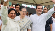Congress Reaches Out To Mayawati S Bsp For Alliance In Haryana Election