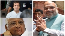 Rebels Will Drag Bjp In Maharashtra Says Congress Ncp