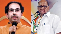 Ncp Offers Support To Shiv Sena If Uddhav Thackeray Becomes Maharashtra Cm Sources