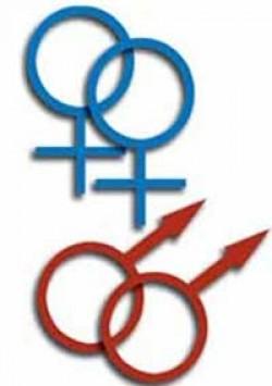 India Delhi Hc Legalizes Homosexuality