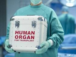 Organ Transplant Complaint