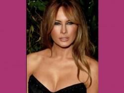 Donald Trump S Golden Girls