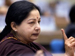 Remove Jayalalithaa S Photo Amma Name From Govt Schemes Says Petition Madras High Court
