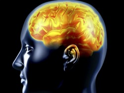 Mind Hacking Scientists Want New Laws To Stop Our Thoughts From Being Stolen