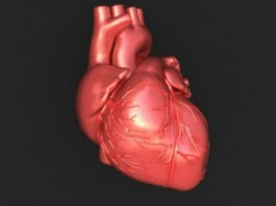 Man With Two Beating Heart