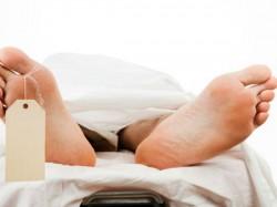 Fever Death Kerala Woman Died By Dengue