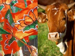 Government Will Amend Cattle Order Says Harsh Vardhan