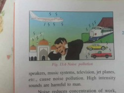 Icse Science Book Uses Picture Of Mosque To Refer To Noise Pollution
