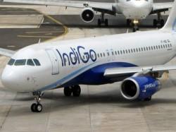 Man Caught Misbehaving Mid Air On Hyderabad Delhi Flight Arrested