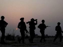 Pakistan S Bat Team Carried Daggers Mutilate Cameras Record Terror Attack