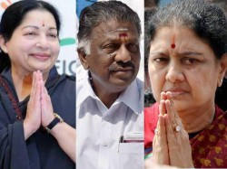 Plea To File Case Against 186 Including O Panneerselvam Sasikala