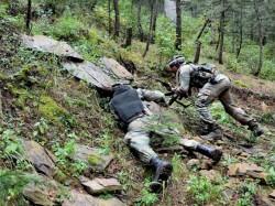 Will Keep Punishing You Loc Misadventures India Warns Pakis