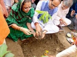 Mp 6 Crore Trees 12 Hours Paris Agreement Guinness World Record