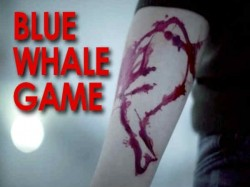 Ig Manoj Abraham Comment About Blue Whale Game