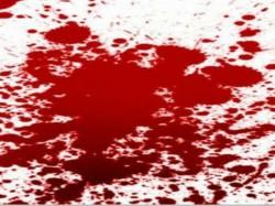 Citu Leader S House Attacked In Kattakkada