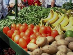 Food Security Department S Warning To Vegitable Merchants