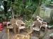 ബസുടമകളുടേയും തൊഴിലാളികളുടേയും ഒരുദിവസത്തെ സമ്പാദ്യം മുഖ്യമന്ത്രിയുടെ ദുരിതാശ്വാസ നിധിയിലേക്ക്